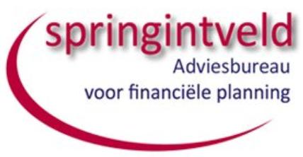 René Springintveld